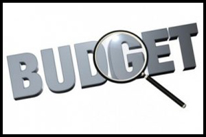 Budget 2015: Analysis & Verdict CII, Bhopal Chapter